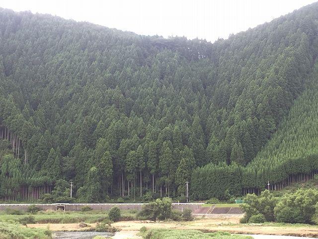 山林仲介 京都市京北