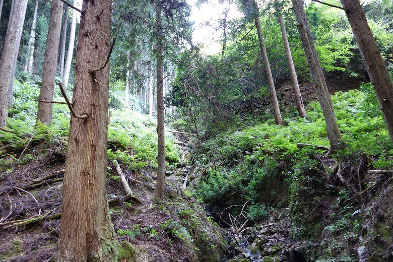 山林境界線