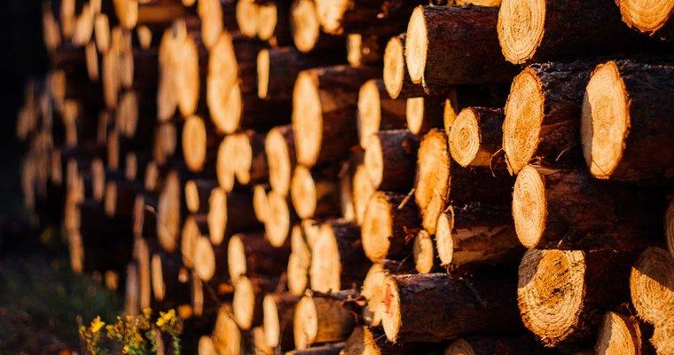 木材・銘木販売