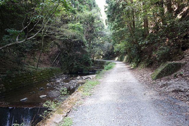 京都市西京区南松尾 林道