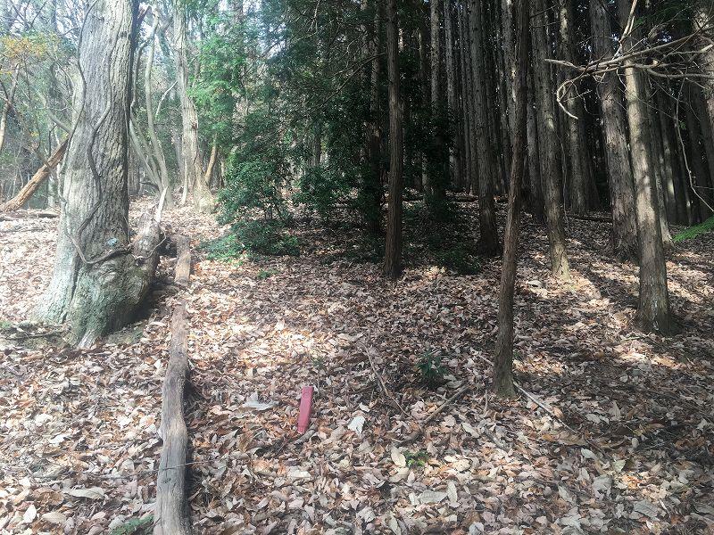 山林物件 境界線
