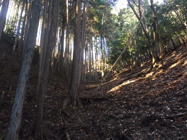 山林物件 京都市北区西賀茂檀ノ尾