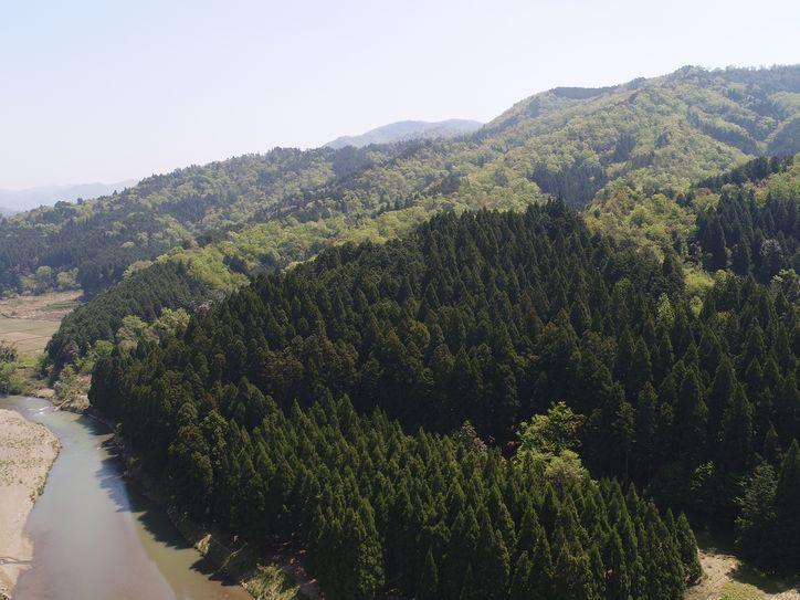 山林物件 京都府綾部市