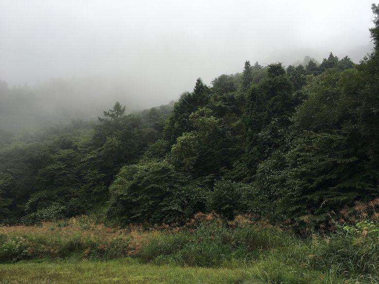 山林物件 群馬県甘楽郡南牧村