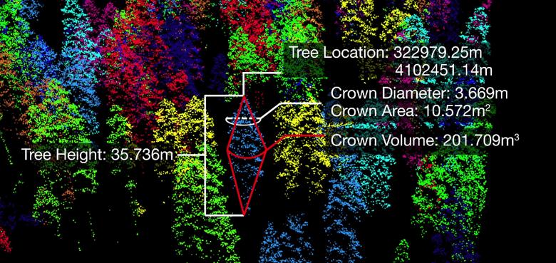 森林データ解析