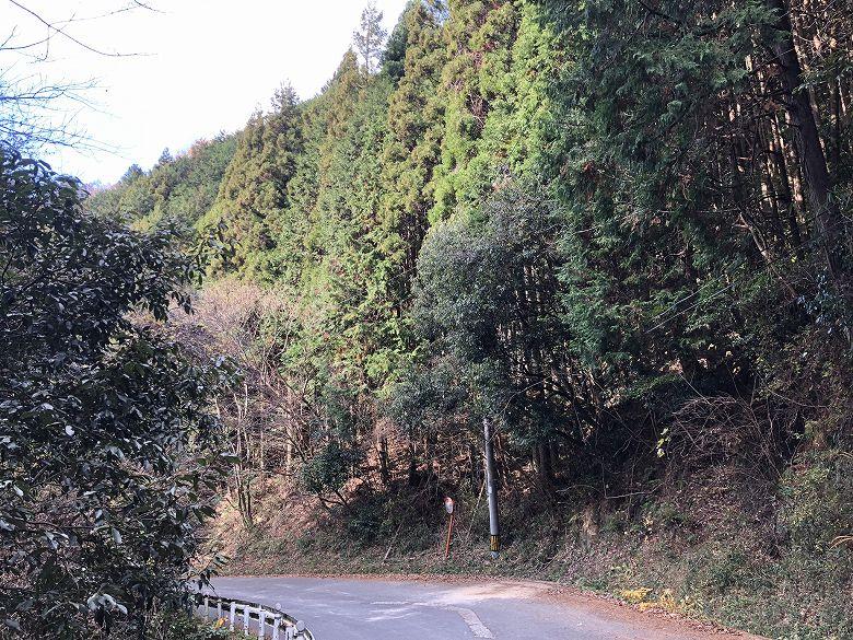 山林物件 奈良県桜井市辻