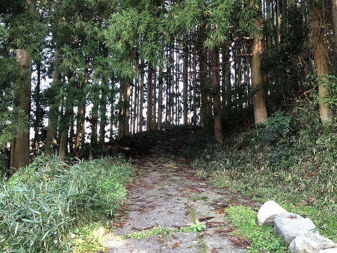 山林物件 大阪府豊能郡豊能町