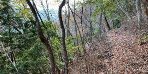 山林物件 和歌山県伊都郡高野町