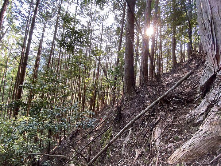 奈良県十津川村山林物件 北側境界
