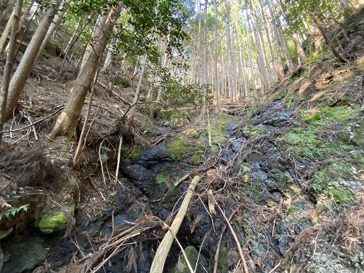 奈良県十津川村山林物件 境界の谷