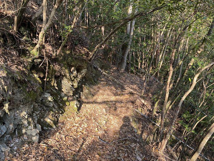 奈良県十津川村山林物件 山林内の里道