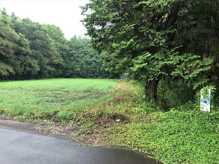 茨城県猿島郡山林物件 北側道路から
