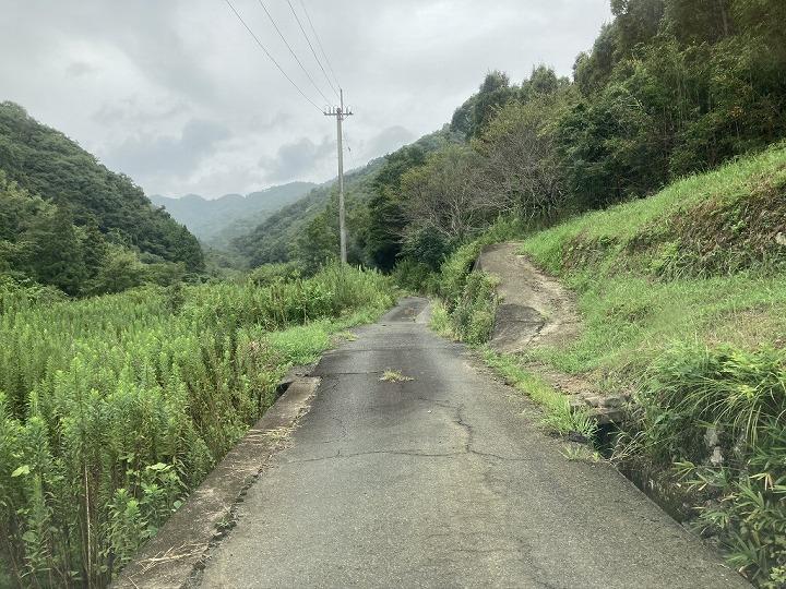 山林物件進入路 和歌山県紀の川市