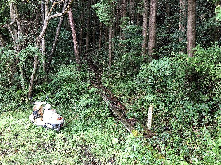 栃木県芳賀郡山林物件 入口