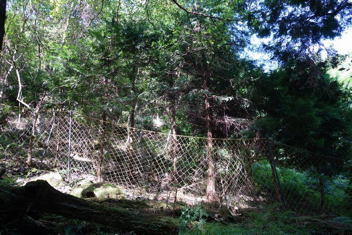 山林の維持費