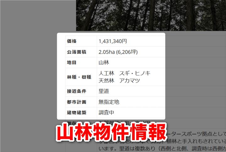 山林物件情報