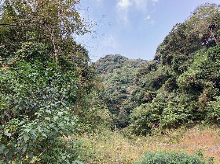 山林物件 鹿児島県姶良市