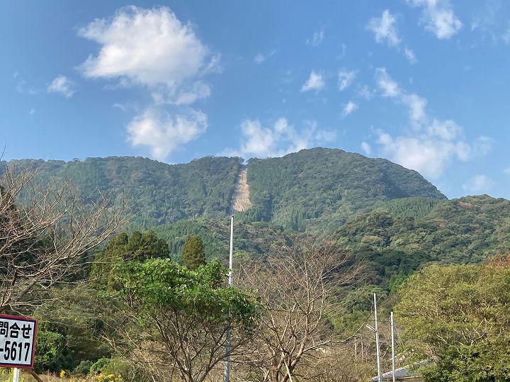 鹿児島県山林物件 道路から見る