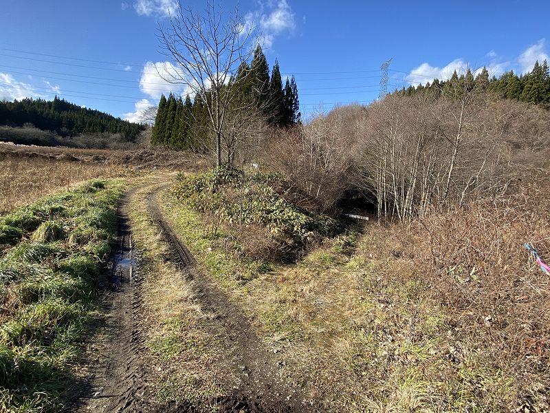 青森県山林物件 林道の奥が対象地
