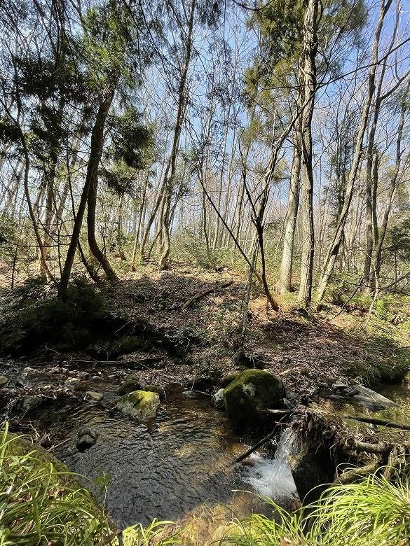 山林物件 広島県山県郡 林内の小川