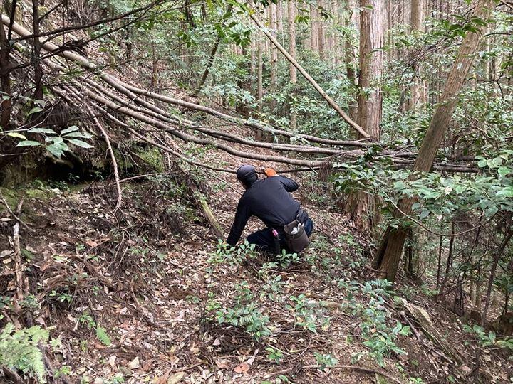 山林物件歩道 三重県熊野市