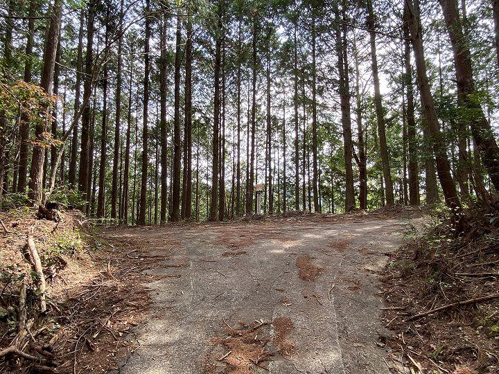 浜松市山林物件 山林入口