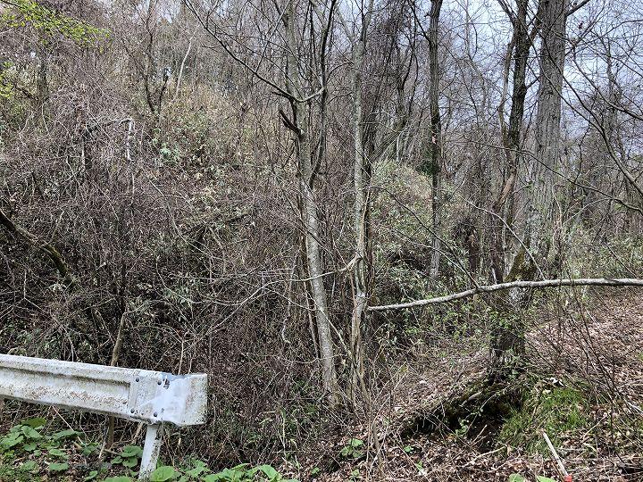 山林物件 境界