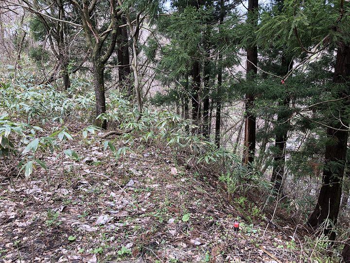 山林物件 測量跡の杭