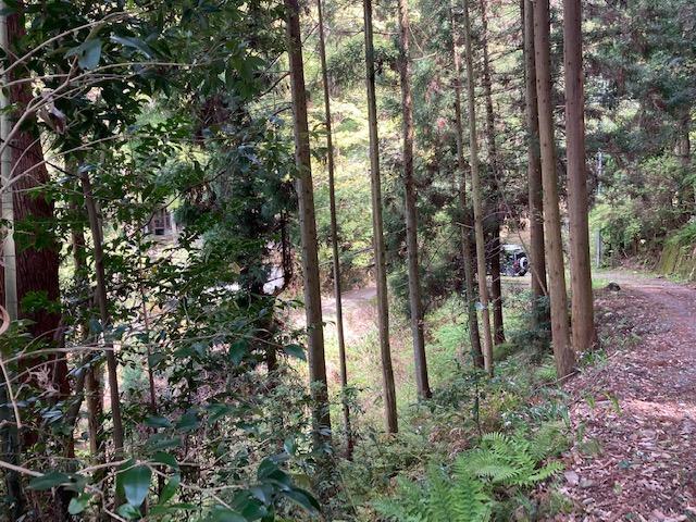 山林物件 大阪府豊能郡能勢町 一部飛び地
