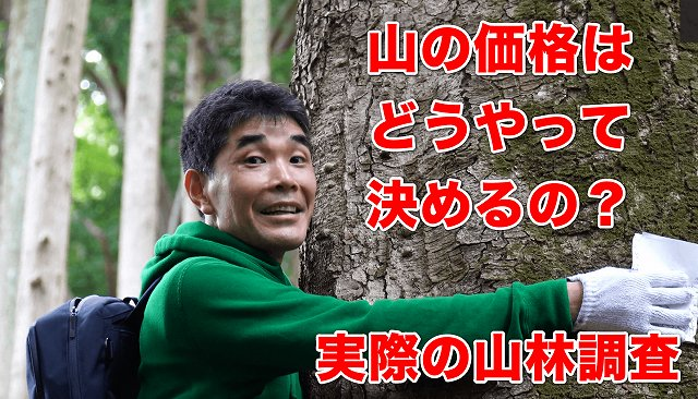 youtubeサムネイル 実際の山林調査①