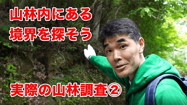 youtubeサムネイル 実際の山林調査②